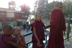 YOUNG MONKS Nepal Kathmandu